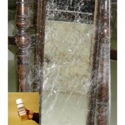 Spray toile d'araignée 300 ml